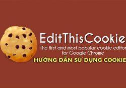 Hướng dẫn sử dụng Cookie để đăng nhập tài khoản trên trình duyệt Web