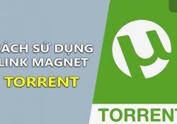 Cách sử dụng link Magnet Torrent để tải file với phần mềm Torrent