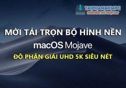 Mời tải về hình nền macOS Mojave trọn bộ độ phân giải UHD 5K siêu nét